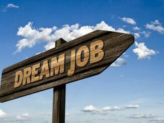 Die Qual der Berufswahl: Geld oder Leidenschaft?