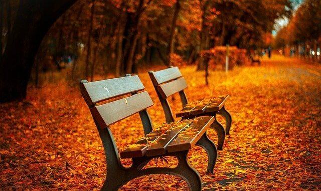 Fit für den Herbst sein: Unsere 5 besten Tipps
