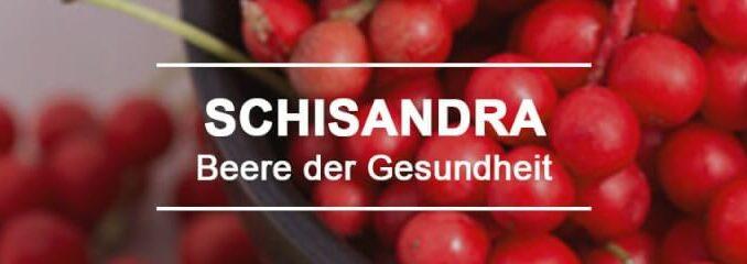 Schisandra - die Beere der Gesundheit und ein Superfood