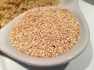 Zwei Quinoa-Anbaugebiete in Deutschland