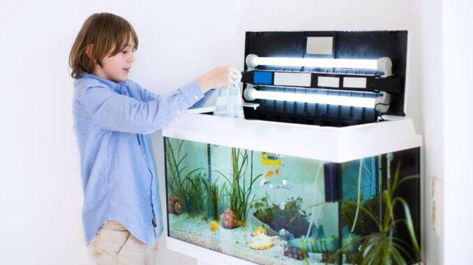 Aquaristik für Jedermann - es muss nicht immer teuer sein 1