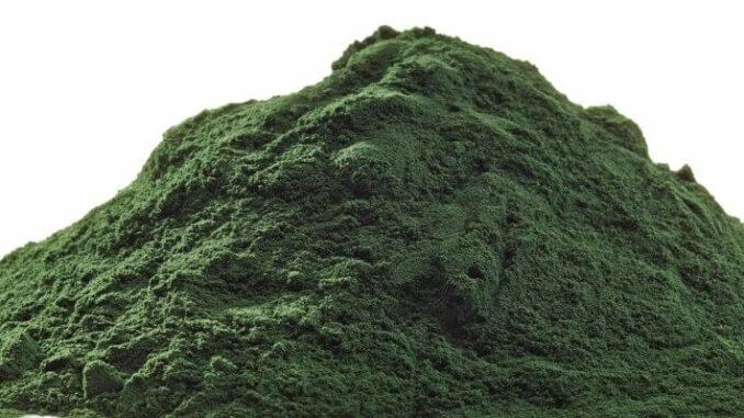 Spirulina Algenpulver bzw. Chlorella Pulver