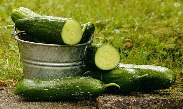 Die Gurke: Der Normalo unter den Superfoods