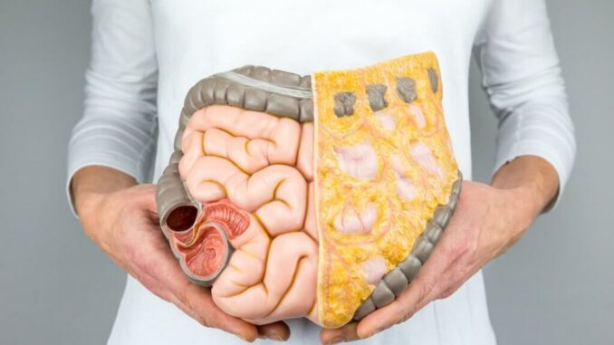 Darmreinigung mit Probiotika & Präbiotika