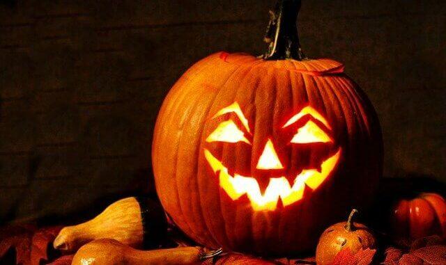 Zu schade für Halloween: Kürbis als Superfood zum Abnehmen