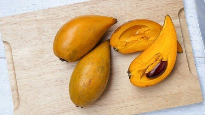 Die Superfrucht Lucuma, auch als Canistel bekannt